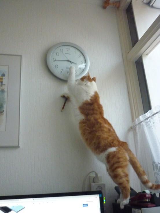 de klok gelijk zetten
